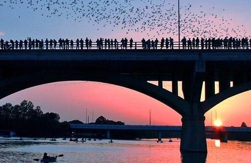 Lady Bird Lake - Austin
