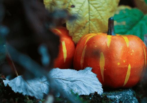 Spécialités à base de citrouille à déguster durant Halloween